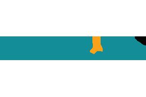 indoo.rs logo