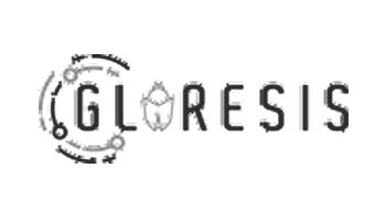 Glaresis